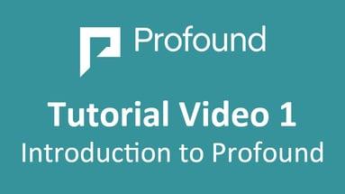 Profound Video
